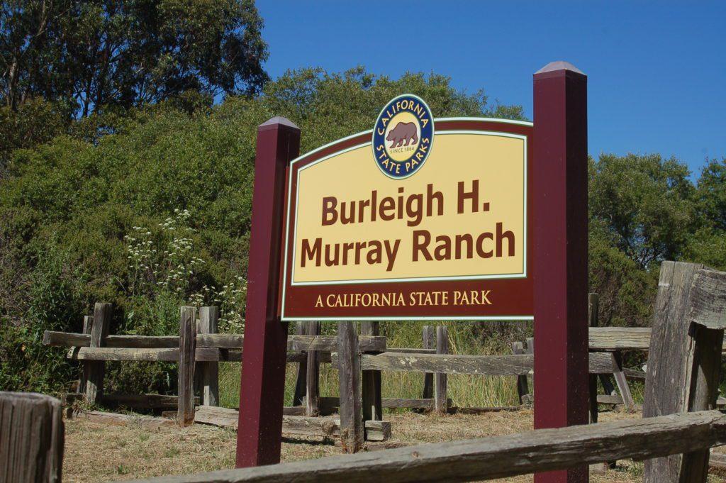 Burleigh-Murray-1