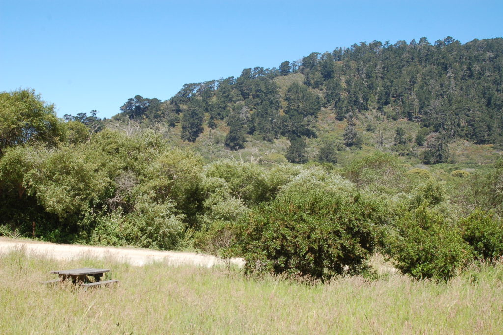 Website2-Rancho-Del-Oso