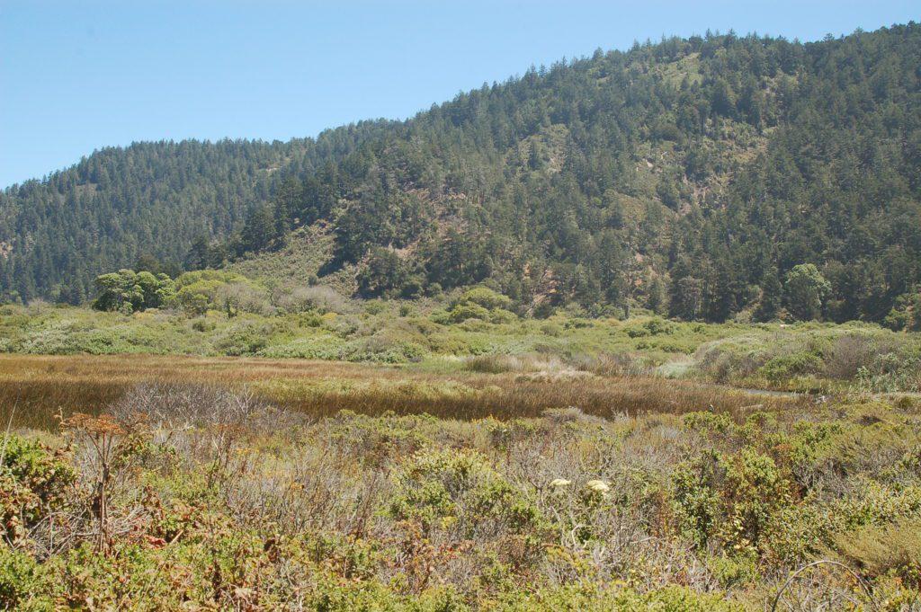 Website3-Rancho-Del-Oso