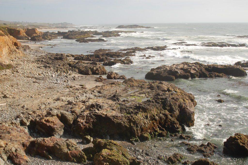 Website5-Pescadero